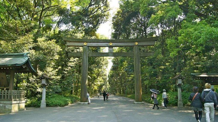 Yoyogi Park (Yoyogi kōen), Tokyo, Japan