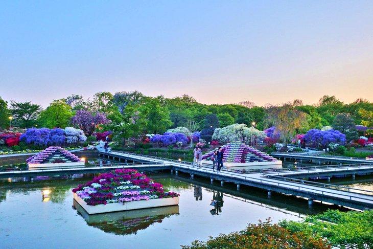 Ashikaga Garden