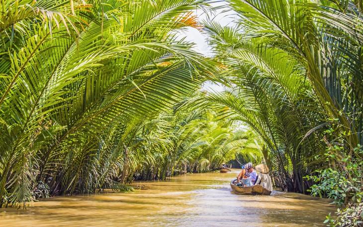 Mekong Deltası, Vietnam