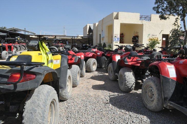Oasis Safari, Şarm El Şeyh