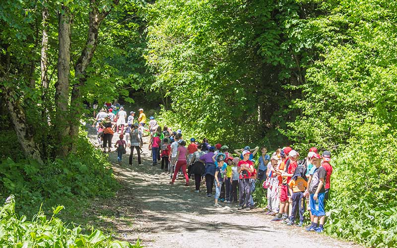 Teberdinsky Nature Reserve