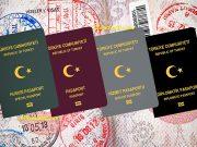 pasaport türleri