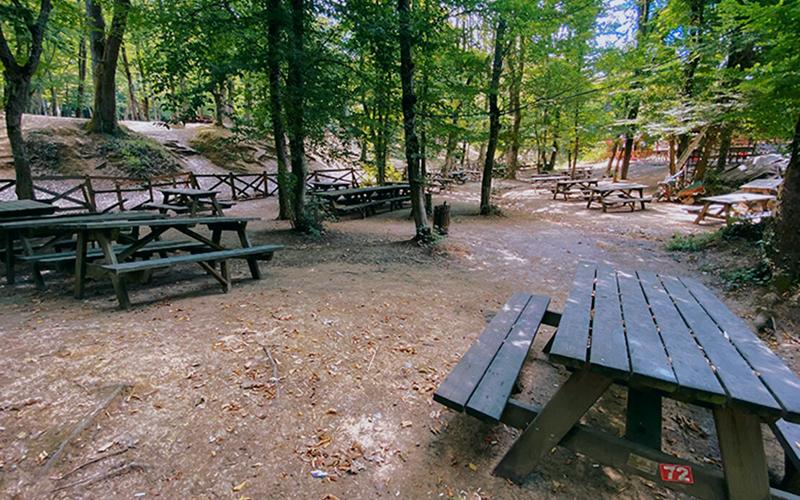 belgrad ormanı piknik